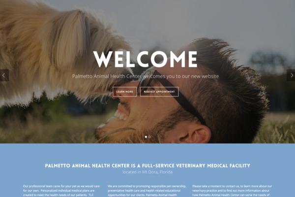 palmetto_homepage